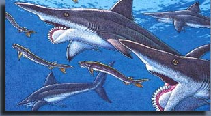 Геликоприон (Helicoprion).