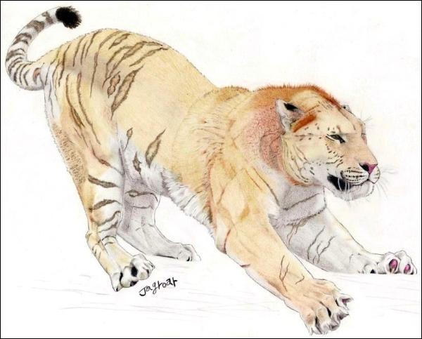 Европейский пещерный лев (иллюстрация Jagroar)