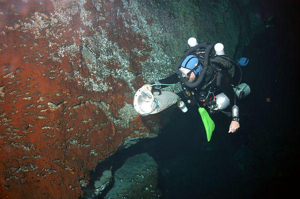 Сбор планктона и бактериальных матов (фото Tamara Thomsen)