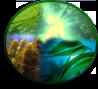 Подцарство: Водоросли (Algae)